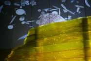 diatom video over core
